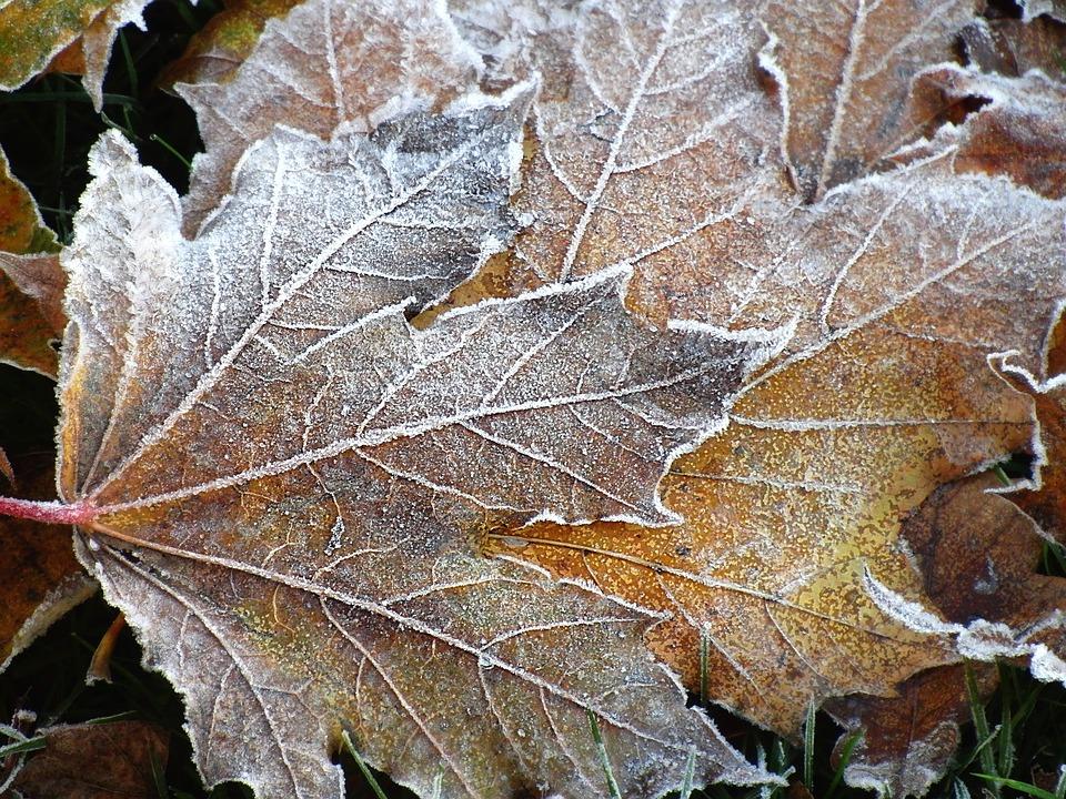 Winter Seven Lochs Events